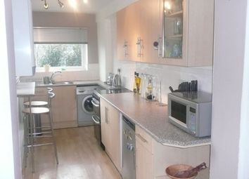 Thumbnail 3 bed terraced house to rent in Nicholson Road, Meersbrook, Sheffield