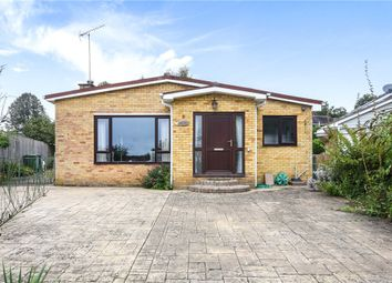 Thumbnail 4 bed bungalow for sale in Ashlong Grove, Halstead