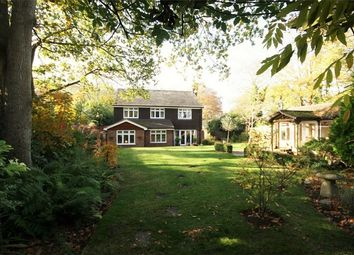 Thumbnail 5 bed detached house for sale in Winkton, Christchurch, Dorset