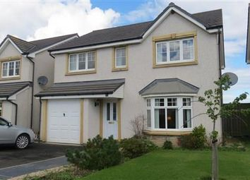 Thumbnail 4 bed detached house to rent in Chesterhall Avenue, Macmerry, Tranent