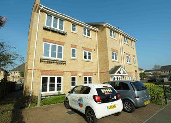 Thumbnail 2 bed flat to rent in Chestnut Grove, London