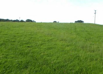 Thumbnail Land for sale in Approx 6 Acres, Brechfa, Carmarthen