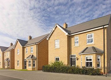 """Thumbnail 4 bed detached house for sale in """"The Berrington"""" at Potton Road, Biggleswade"""