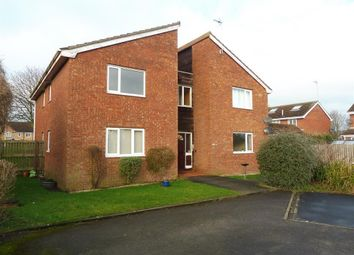 Thumbnail Studio to rent in Hedgerow Court, Hull
