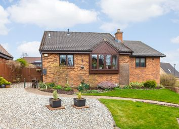 Thumbnail 4 bed detached house for sale in Maesterton Place, Dalkeith, Midlothian