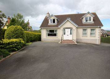 Thumbnail 3 bed bungalow for sale in Middle Road, Islandmagee