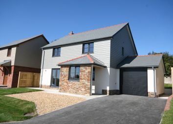 Thumbnail 4 bed detached house for sale in South Street, Sheepwash, Beaworthy