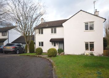 Thumbnail 4 bed detached house for sale in Newton Manor, Shirenewton Chepstow