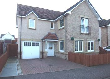 Thumbnail 4 bed detached house to rent in Hilton Lane, Cowdenbeath, Fife
