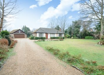 Thumbnail 3 bed bungalow to rent in The Spinney, Sunningdale, Ascot