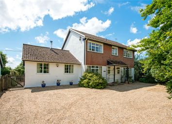 Thumbnail 4 bed detached house for sale in East Woodyates, Nr Sixpenny Handley, Dorset