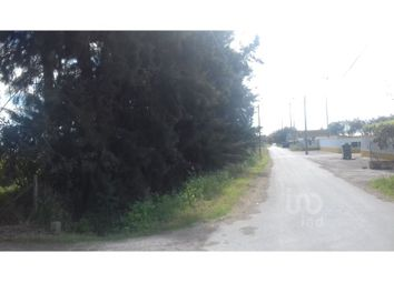 Thumbnail Land for sale in Alcochete, Alcochete, Alcochete