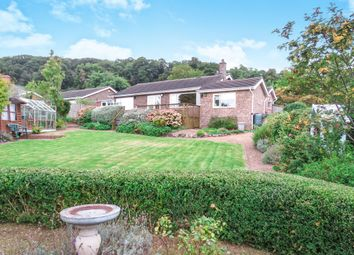 Thumbnail 3 bed detached bungalow for sale in Combeland Road, Minehead