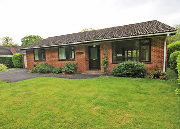 Thumbnail 3 bed detached bungalow for sale in Brockhills Lane, New Milton
