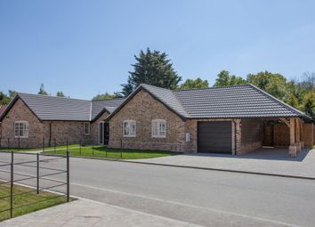 Thumbnail 3 bed detached bungalow for sale in Cley Lane, Saham Toney, Thetford