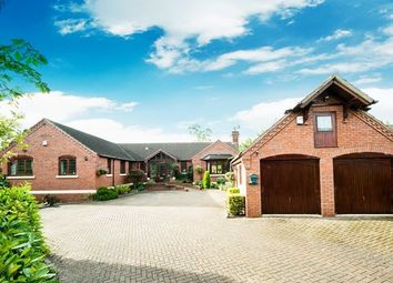 Thumbnail 4 bed detached bungalow to rent in Stourport Road, Great Witley, Worcester