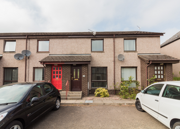 Thumbnail 2 bed terraced house to rent in 12A Manor Street, Forfar