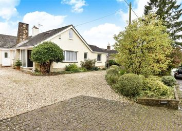 Thumbnail 4 bed detached bungalow for sale in Winterbourne Bassett, Swindon