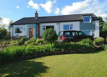 Thumbnail 4 bed bungalow for sale in Hayton, Brampton, Cumbria