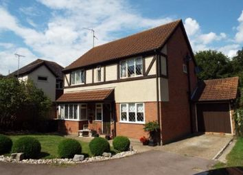 Thumbnail 4 bed detached house for sale in Warwick Road, Rayleigh