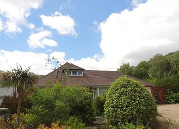Thumbnail 5 bed detached bungalow to rent in Queens Park Avenue, Bournemouth