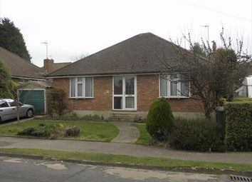 Thumbnail 2 bed detached bungalow to rent in Third Avenue, Bexhill-On-Sea