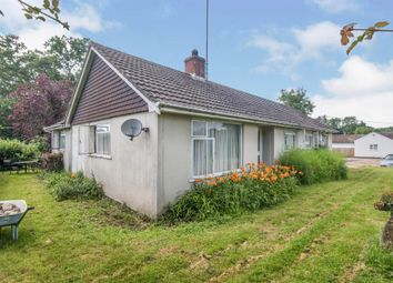Thumbnail Detached bungalow for sale in The Frenches, East Wellow, Romsey