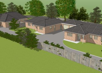 Thumbnail 3 bed detached bungalow for sale in Kempton Cross, Worlingham
