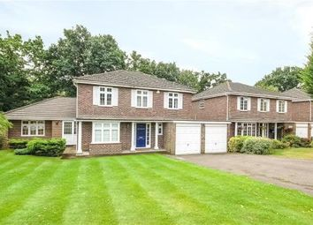 Thumbnail 5 bedroom detached house for sale in Corrie Gardens, Virginia Water, Surrey