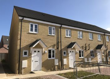 "Thumbnail 2 bedroom terraced house for sale in ""The Hanworth "" at Lime Avenue, Oulton, Lowestoft"