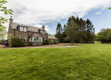 Thumbnail 2 bedroom detached house to rent in Lovehall Road, Wellbank, Angus