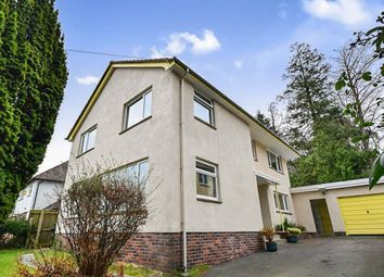 Thumbnail 4 bed detached house for sale in Rowantree Road, Newton Abbot