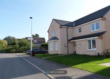 Thumbnail 4 bed detached house to rent in Wester Kippielaw Gardens, Dalkeith
