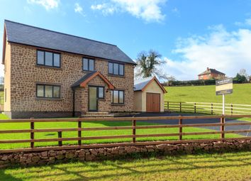 Thumbnail 4 bedroom detached house for sale in Tresseck Mill Road, Hoarwithy, Hereford