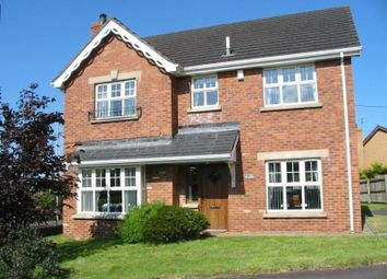 Thumbnail 4 bed detached house to rent in The Beeches, Hightown Road, Newtownabbey