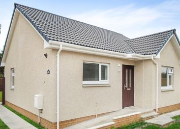 Thumbnail 2 bed bungalow to rent in Beeches, Ladybank, Cupar