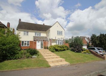 Thumbnail 5 bed property to rent in Albion Park, Loughton