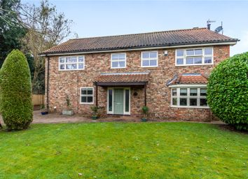Thumbnail 5 bed detached house for sale in Naburn, York