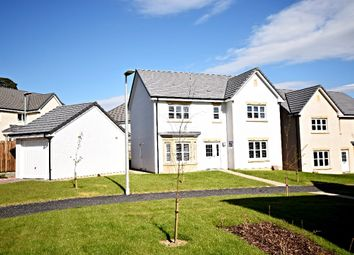 Thumbnail 4 bed detached house for sale in Doonvale Drive, Ayr