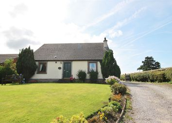 Thumbnail 5 bed detached house for sale in Willart, Wiggonby, Wigton, Cumbria
