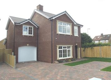 Thumbnail 4 bed detached house to rent in Rye Road, Hoddesdon