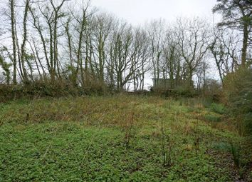 Thumbnail Land for sale in Of Lane End Cottage, Bradworthy, Holsworthy
