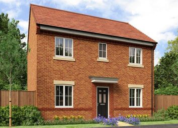 "Thumbnail 4 bed detached house for sale in ""The Buchan"" at Buttercup Gardens, Blyth"