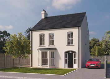 Thumbnail 4 bed detached house for sale in 58, Hartley Hall, Greenisland
