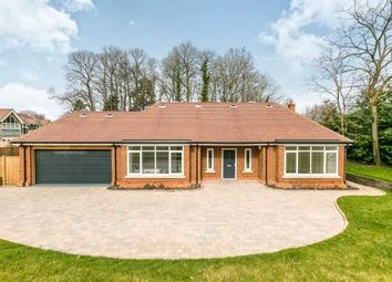 Thumbnail 4 bed bungalow for sale in Gasden Copse, Witley, Godalming