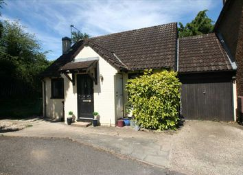 Thumbnail 2 bed bungalow for sale in Lychpit, Basingstoke, Hampshire