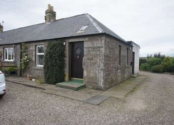 Thumbnail 2 bed semi-detached house to rent in The Steading, Hospitalfield, Westway, Arbroath