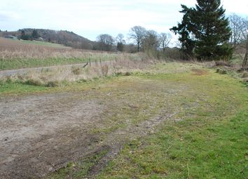Thumbnail Land for sale in Abernyte, Perth