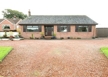 Thumbnail 3 bed bungalow to rent in Little Bampton, Wigton