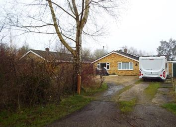 Thumbnail Property for sale in Thompson, Thetford, Norfolk